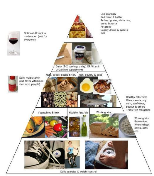 food pyramid harvard list school incorrect